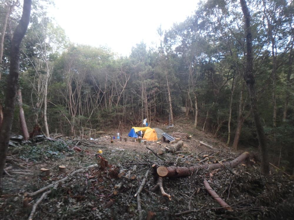 伐採後の山の開拓地