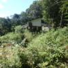 草刈り前の小屋